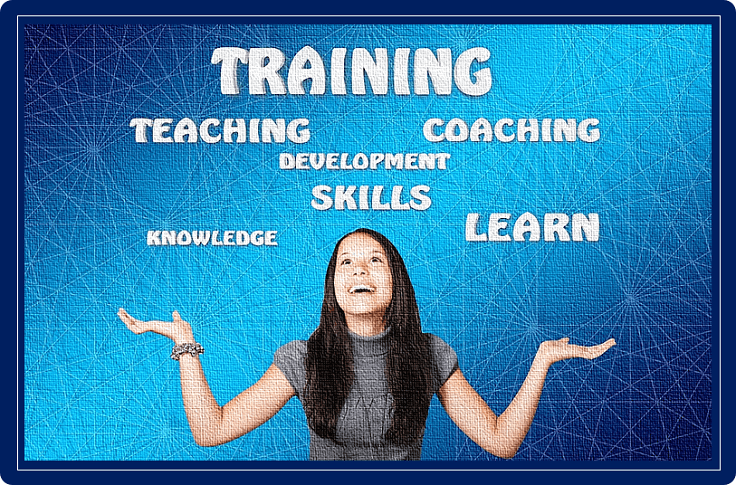 Online teaching, training, and learning